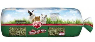 timothy hay 24 oz